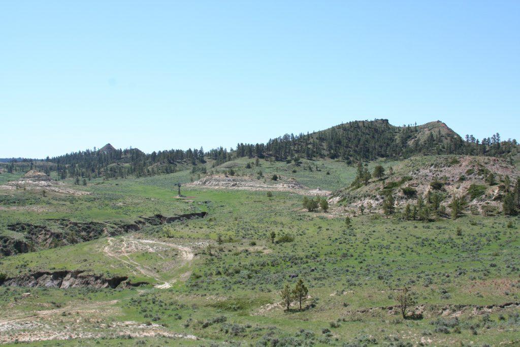 ranch beauty Montana
