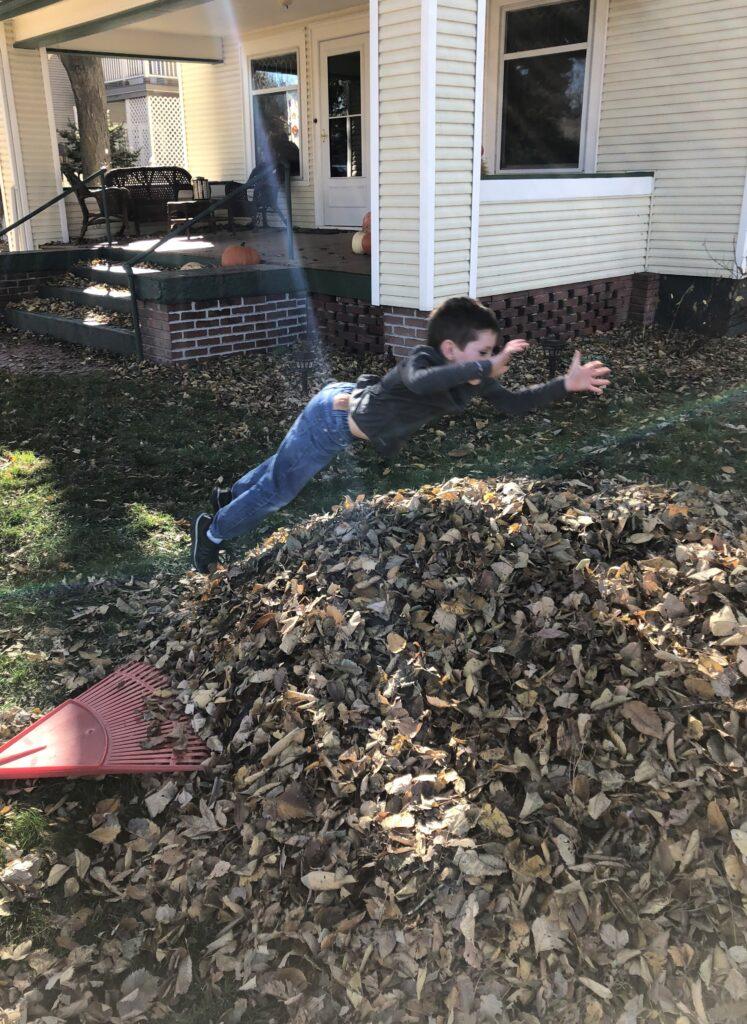 leaf pile joy